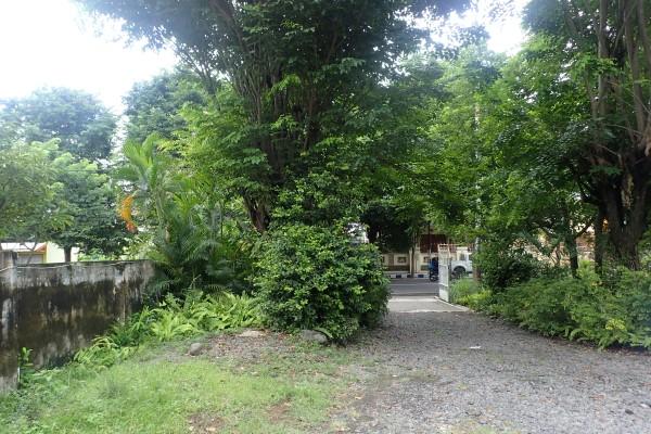 Rumah Cungking Banyuwangi