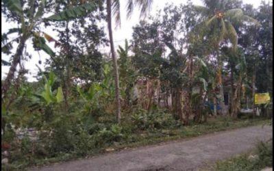 Dijual Tanah Lokasi Super Strategis di Srono Banyuwangi Cocok Untuk Kavlingan (untuk usaha properti)